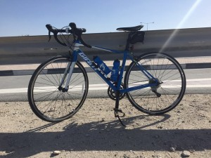 Giant Defy review