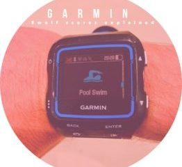 Garmin SWOLF score explained